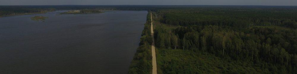 Пружанский лесхоз